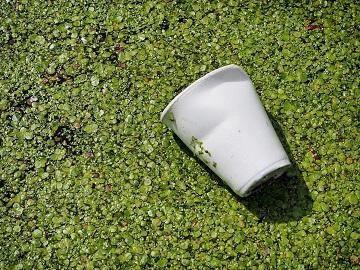 Repensar os Plásticos na Economia: Desenhar, Usar, Regenerar (DURe)